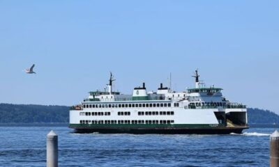 Lloyd's Register Releases Insight Report On Safety In Passenger Ferry Industry 12