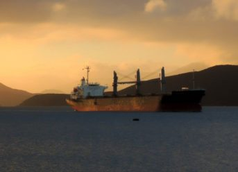 SwissMarine Hires One of Diana Shipping's Capesize Vessels 6