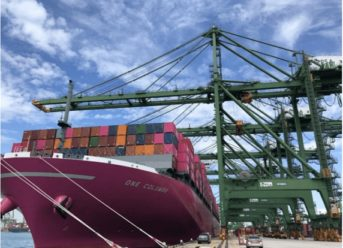 Ocean Network Express And PSA Launch Joint-Venture Container Terminal In Singapore 7