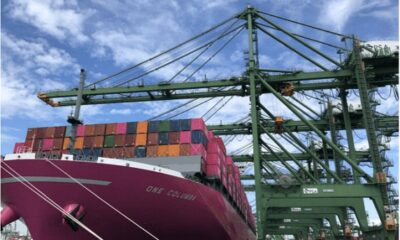 Ocean Network Express And PSA Launch Joint-Venture Container Terminal In Singapore 16