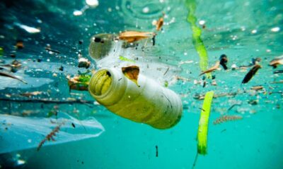 European Commission Welcomes Ambitious Agreement On New Rules To Reduce Marine Litter 4