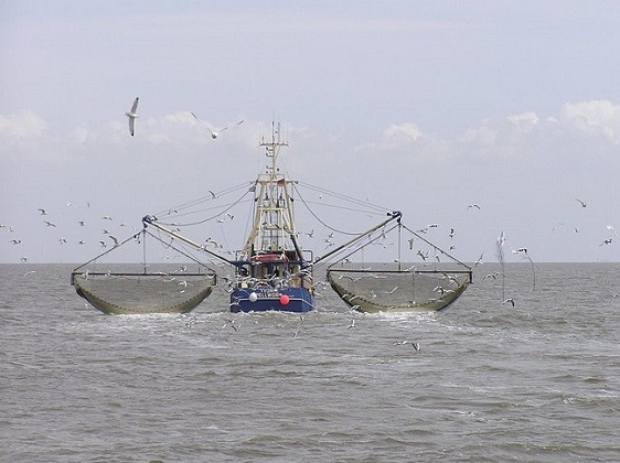 Oceana Investigation Keeps One Of The World's Largest Fish Factory Vessels On Illegal Fishing List 5