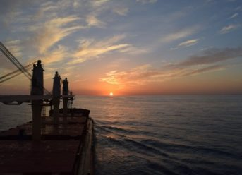 Diana Shipping, Koch Shipping Ink Time Charter Deal for Capesize Bulker 2