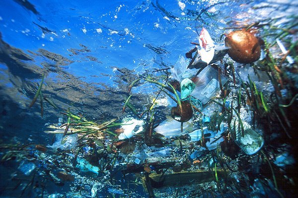 MOL Announces To Cooperate In JAMSTEC's Marine Plastic Pollution Survey