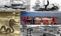 The UNSOLVED Mystery Of The Sea Serpent