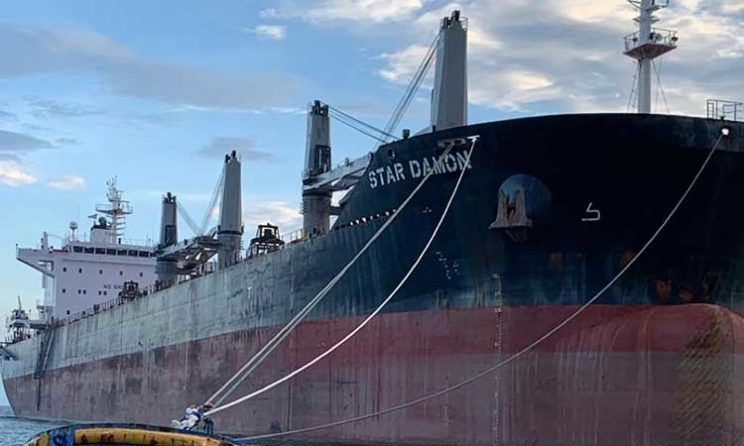 GriegMaas Welcomes New Supramax - The Star Damon