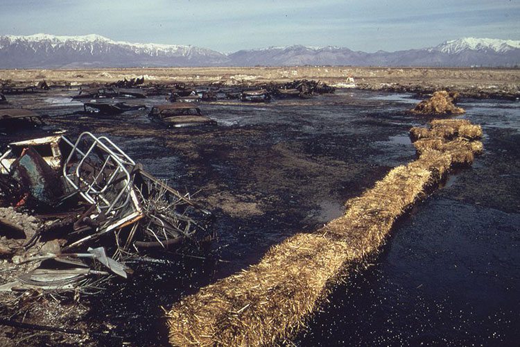 Using Sorbent like hay to cleaunp an oil spill