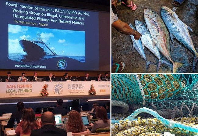 IMO Joining Forces To Combat Illegal, Unreported And Unregulated Fishing 1