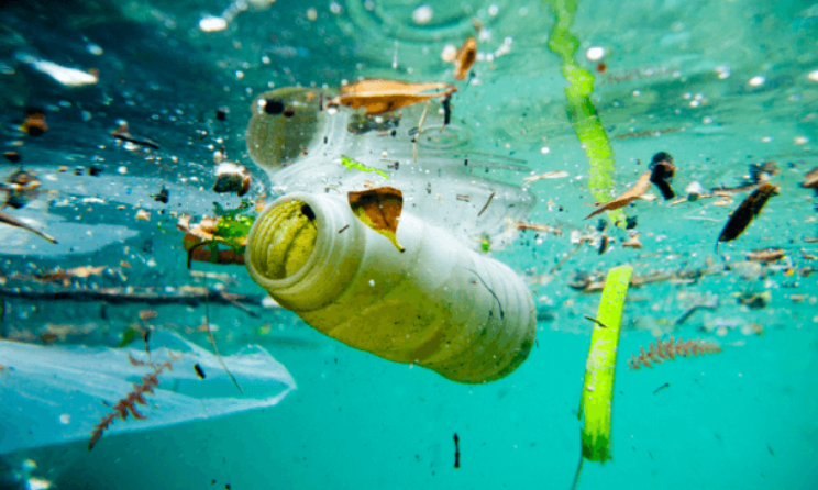 Clean Oceans Initiative Reaches A Third Of Its 5-Year-Target In The First Year Itself