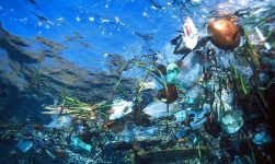 NOSCA Moves From Oil Spill Response To Clearing Plastic From Our Oceans 18