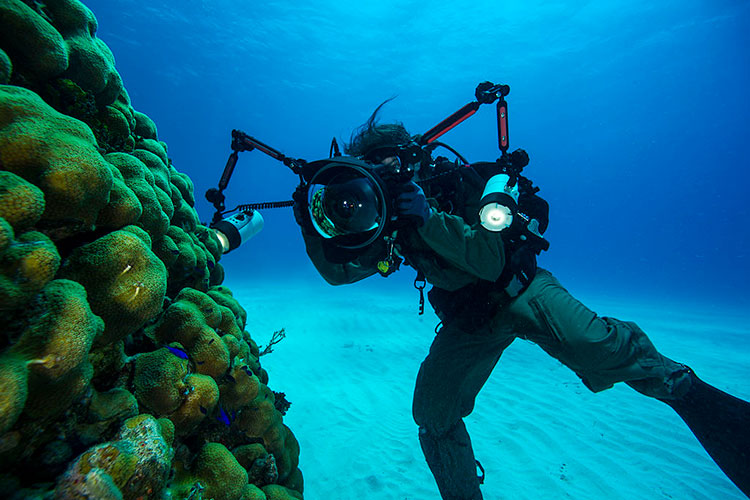 How To Get A Career In Underwater Photography?