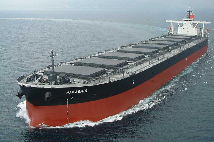 What Are Bulk Carriers?